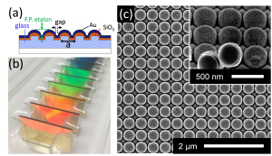 Plasmonic Nano-dome Arrays for SERS ABC