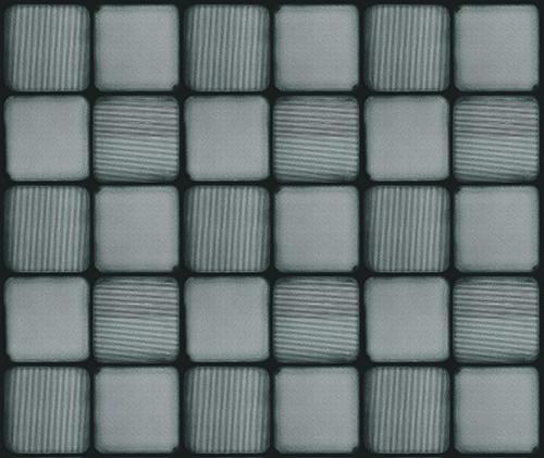 SEM image of pixelated polarizer